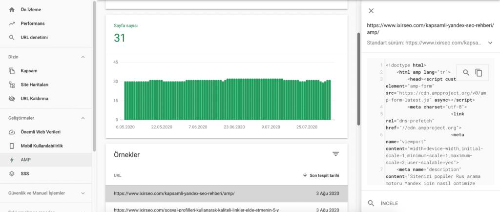 Google Search Console AMP Raporu